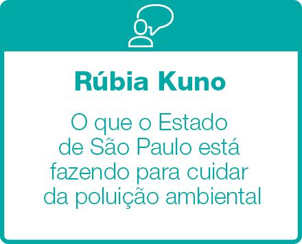 O que o Estado de São Paulo está fazendo para cuidar da poluição ambiental